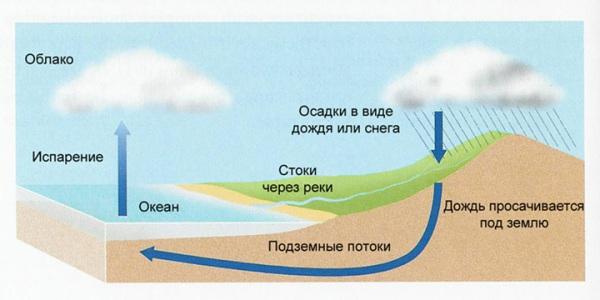 Гидрологический цикл