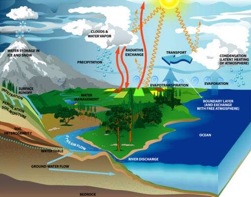 Hydrologic Cycle