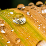 Факты о дистиллированной воде