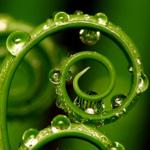 Зачем нужна дистиллированная вода