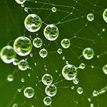 Преимущества дистиллированной воды